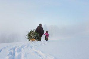 Récupération du sapin de Noël © SalzburgerLand Tourismus