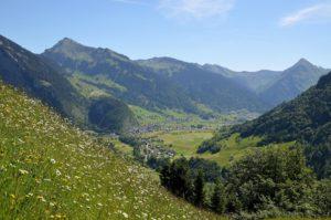 Forêts d'Au dans le Bregenzerwald