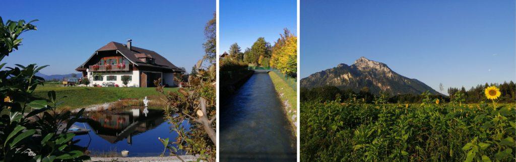 Chemin_de_promenade_velo_Alessandra_Misiani_montage